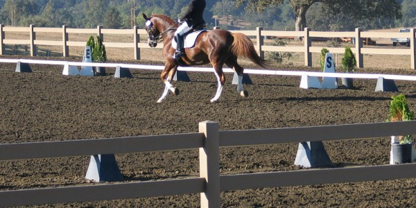 two rail hdpe equine ranch fencing featured